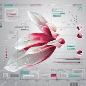 Flower infographics set